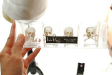 NICOLE MILLER PIER 1 SKULL ACRYLIC SHOT GLASSES NEW NEW IN BOX