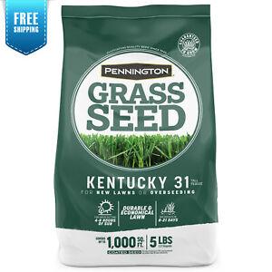 Pennington Kentucky 31 Tall Fescue, KY-31 Grass Seed; 5 Pound Bag