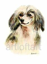 Chinese Crested #2 Dog Aceo Card Print by A Borcuk 2.5x3.5