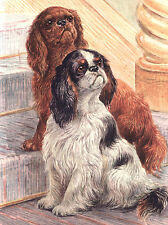 KING CHARLES TOY SPANIEL CHARMING DOG GREETINGS NOTE CARD 2 CUTE DOGS ON STAIRS