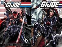 GI JOE A REAL AMERICAN HERO ANNIVERSARY EDITION #1 AND #250 CONNECTING COVER SET