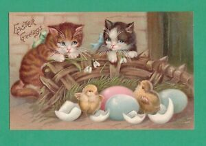 VINTAGE EASTER POSTCARD KITTENS WATCH CHICKS HATCH FROM EGGS
