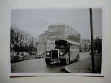 WALES131 - 1940s NEWPORT CORPORATION OMNIBUSES - BUS PHOTO Wales