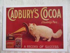 CADBURY COCOA POSTCARD - Cat with gramaphone