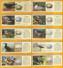 Birds UK Issue Collectable Tea Cards
