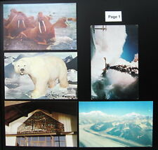 1950's 1960's 1970's 1980's Postcard Lot ~ ALASKA ~ 25 Postcards ~ Free Shipping