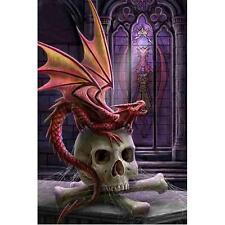 Dragon & Skull FULL DRILL Diamond Painting  20 X30 CM - STOCK IN USA-