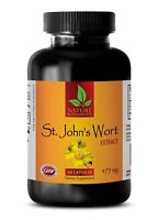 Ginko Herb - ST. JOHN'S WORT EXTRACT - Increase Mental Ability - 1 Bottle