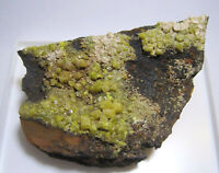 +++ Pyromorphit xx // Mt. Isa Mine, Queensland, Australien +++ Stufe A48