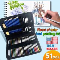 51pc Professional Drawing Artist Kit Set Pencils Sketch Charcoal Art & Bag Tools
