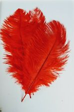 Ostrich Feathers 40 cms (Pack of 3) Red Coloured Ostrich Feathers