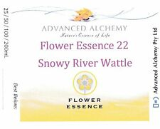 Flower Essence #22 Relationship - Advanced Alchemy 50ml Snowy River Wattle