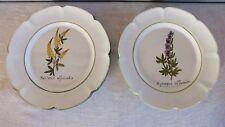 2 assiettes fleurs médicinales Charolles faience 20eme