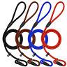 Nylon Rope Pet Slip Lead Dog Training Leash P Choke Collar set Obedience Walking