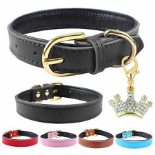 Soft Plain Leather Padded Dog Collars with Crown Pendant Cute for Small Dogs