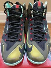 Nike Lebron 11 King Pride DS Size 9