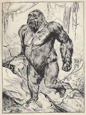 """Il gorilla """"beringè""""."""
