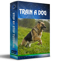 Learn How to Train Your Puppy Dog Training Behaviour DVD