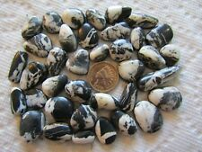 37 White Buffalo Turquoise Ribbon 300 carat Boulder Cabochon Wholesale Lot Cab