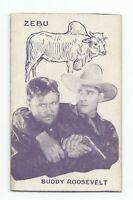Rare 1920's Film Star & Animals Strip Card Buddy Roosevelt & Zebu