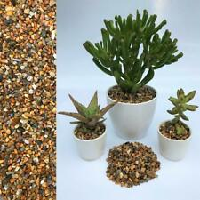 More details for 3-5mm natural stone dressing gravel for cactus succulent bonsai plant pot topper