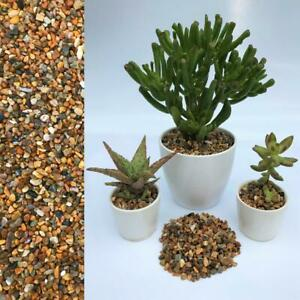 3-5mm Natural Stone Dressing Gravel for Cactus Succulent Bonsai Plant Pot Topper