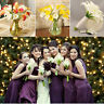 6Head Real Latex Calla Lily Flower Bridal Bouquet Wedding Office Home Decoration