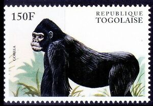 Gorilla, Monkeys, Togo 1996 MNH, Wild Animals