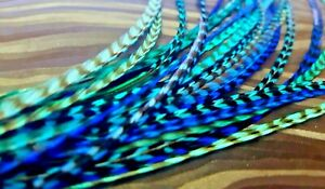 Grizzly Feathers Hair Extensions saddle long Turquoise teal blue aqua 10 striped
