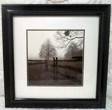 HARRIET SILVERMAN 'Fence In The Mist' Photograph Framed Art