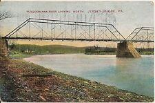 Susquehanna River Looking North Jersey Shore PA Postcard 1911