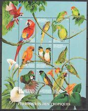 Congo(Kinshasa ) 2000 birds parrots sheetlet 1 I201807