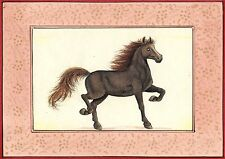 Indian Horse Stallion Art Fine Hand Painted Watercolor Equine Animal Painting