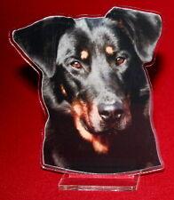 statuette photosculptée 10x15 cm chien beauceron 9 dog hund perro cane