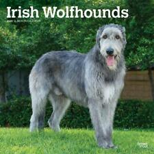 Irish Wolfhounds 2020 Square Wall Calendar by Browntrout Free Post