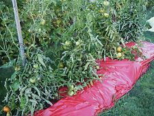 Red Plastic Mulch 1.0 mil Embossed 4 ft x 600 ft Tomato Eggplant Peppers