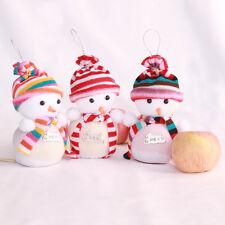 Sweet Chrismas SnowmanDollAppleFruitBagsBoxChristmasDecoration Toy Shape