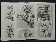 The Graphic 4s02 Prince of Wales Highlands Deerstalking Mar Forest Oct 1881