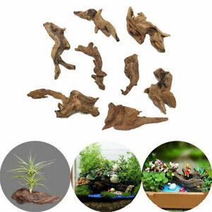 Aquarium Natural Wood Trunk Driftwood Tree Plant Stump Fish Tank Ornament Decor
