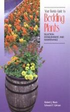 Your Florida Guide to Bedding Plants: Selection, Establishment, and Maintenance