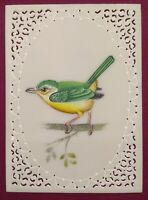 Hand Painted Sparrow Art Fine Birds Miniature Painting India Art Synthetic Ivory