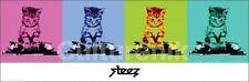 POSTER DJ Kitty Quad Steez