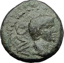 AUGUSTUS 27BC Philippi Macedonia PRIESTS Founding City Oxen Roman Coin i59356