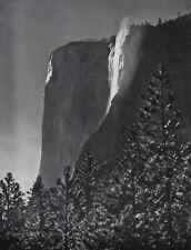 1959 Vintage ANSEL ADAMS El Capitan Fall Yosemite Tree Landscape Photo Art 12X16