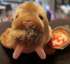 """Ty beanie babies """"Paul� the Walrus Mint condition Rare with Tag Errors! 1999"""