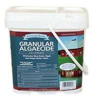 GREENCLEAN ALGAECIDE 20 lb BIOSAFE GREEN CLEAN ALGAE FX