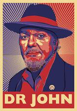 Dr John - Mac Rebennack - New Orleans Piano, R & B, Funk Musician - a poster