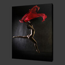 EROTIC DANCER SCARF CANVAS WALL ART PICTURES PRINTS 20 x 16 Inch WALL ART