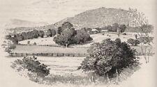 Glenalvon, the Last Station in the Hunter Valley. Australia 1890 old print