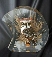 Vintage Carved & Painted Wood Owl in LUCITE Moon 80s